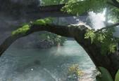RainforestWater.JPG